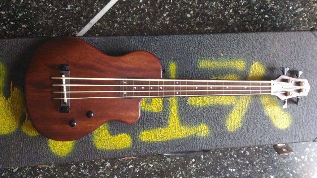 Vista frontale Gold Tone ME-Bass