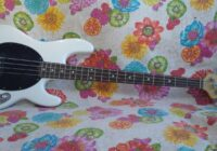 Recensione Sterling by Music Man SUB Ray4